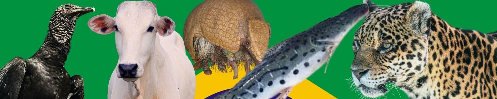 Qual é o animal nacional do Brasil?